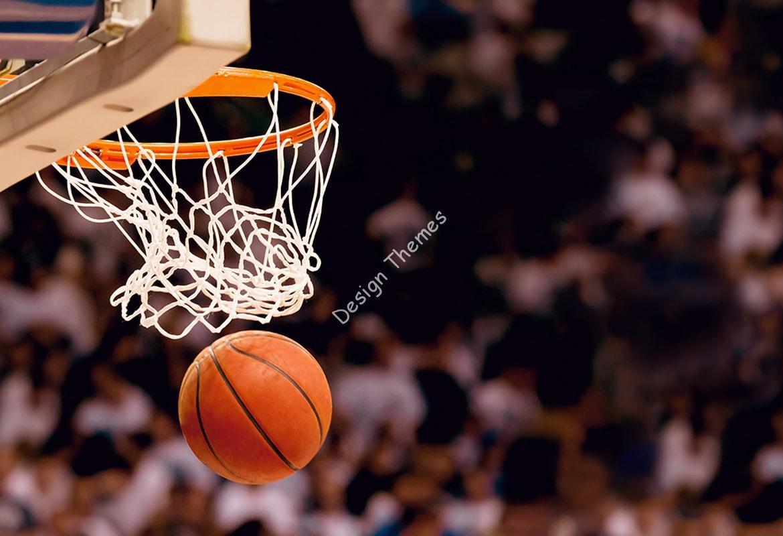 goal-in-basket